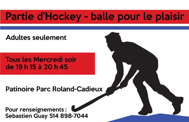 hockey-cosom