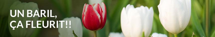 baril-fleurit